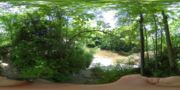 Thumbnail for Hunters Creek County Park (2) : June 2020