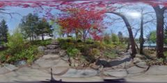 Thumbnail for Japanese Garden of Buffalo : Stone Pathway Near Maple Trees, Exterior